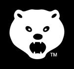 Washington Bears