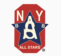 The official logo of the New York All Stars
